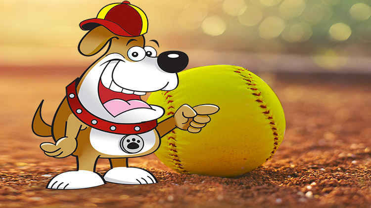 Dog Days of Summer Softball Tournament