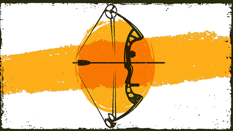 3D Archery Shootout