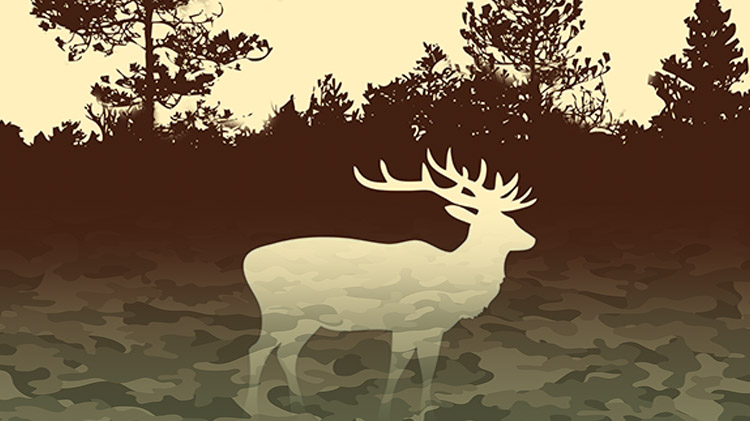 Hunting Season Sale